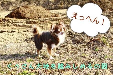 _MG_9605.jpg