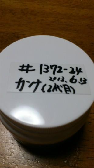 DSC_0373.jpg