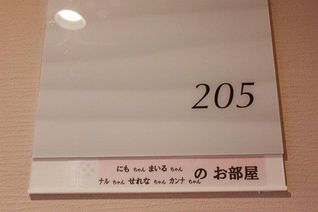 _MG_6340.jpg