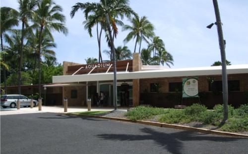 ハワイの噂・裏技・裏話_ワイキキ水族館
