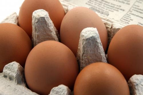 料理の噂・裏技・裏話_ゆで卵と生卵の見分け方