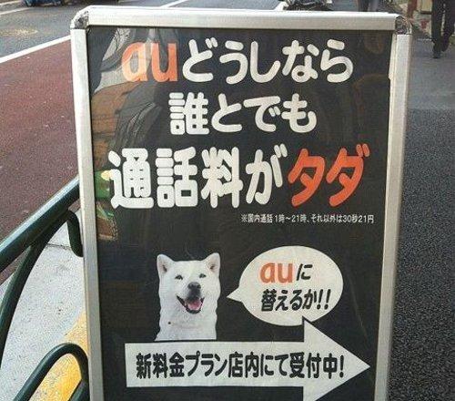 おもしろ画像の噂・裏技・裏話_auの広告にソフトバンクのお父さん犬が登場