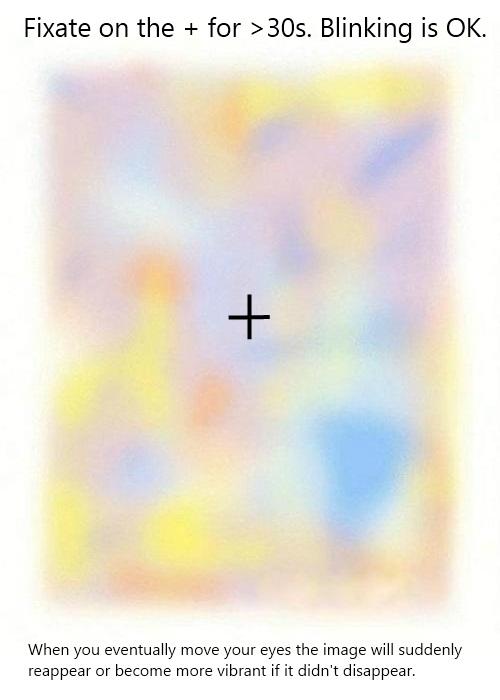 おもしろ画像の噂・裏技・裏話_じっと見ていると色が消えるトリックアート