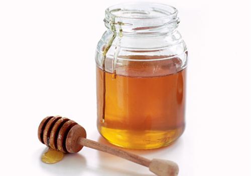 動物の噂・裏技・裏話_蜜蜂が一生で取れるハチミツの量はティースプーン1杯だけ