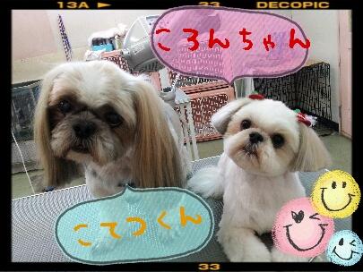 2012-11-01_20.17.10.jpg