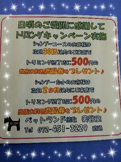 2012-12-02_15.39.02.jpg