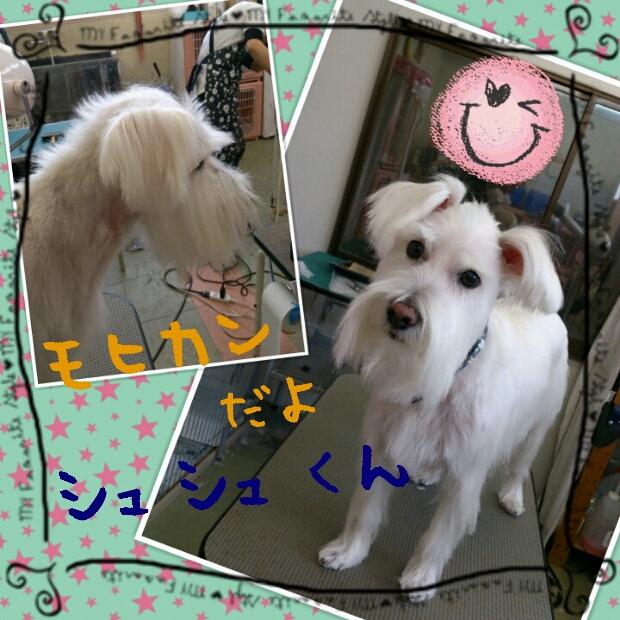 2012-12-12_13.12.07.jpg