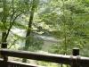 多摩川の様子