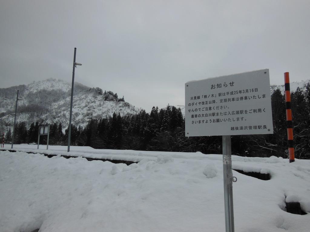 2013.12.23柿ノ木