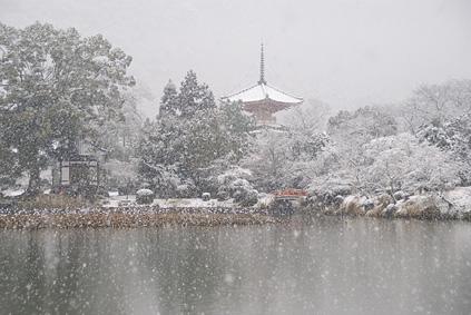 雪降る大沢池