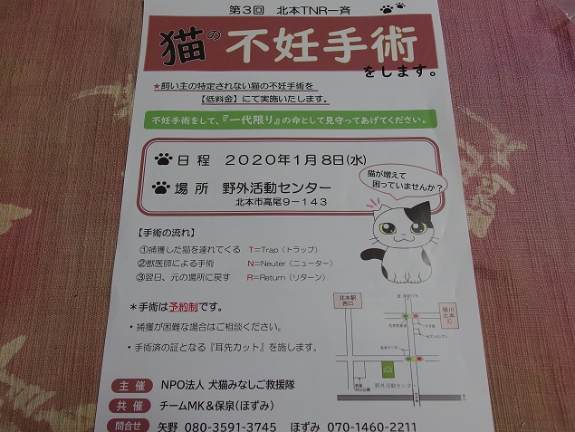みなし 犬 救援 隊 猫 中谷 ご ブログ 百合
