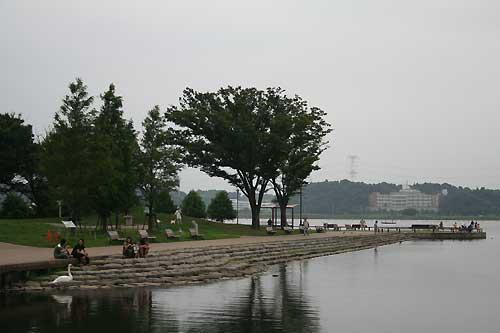 手賀沼公園風景