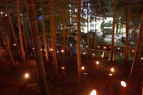 「竹灯篭の夕べ」3.jpg