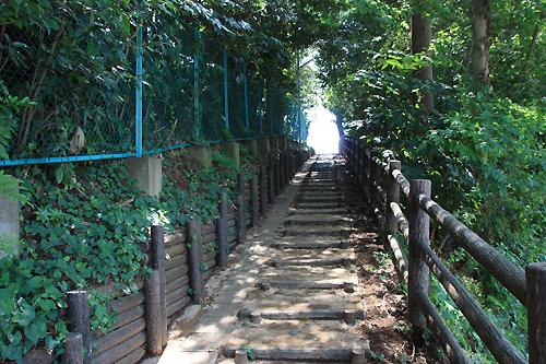 気象台公園坂2.jpg