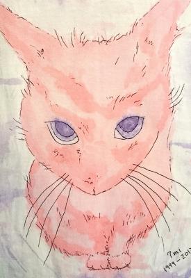 ピンクの世界で一番可愛いシロネコ七味ちゃん