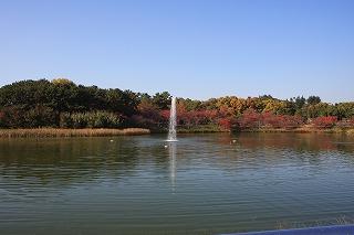大池の紅葉