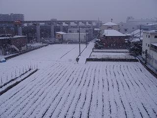 コンデジ雪景色
