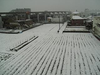 携帯雪景色
