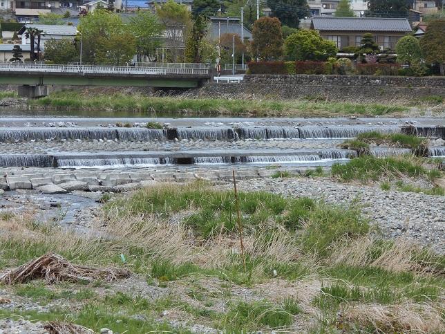 秋川2.jpg