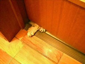 ドアのすきま