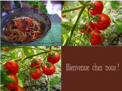 お昼は勿論!トマトのパスタ