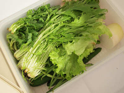 新鮮野菜のストックです。