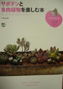 サボテンと多肉植物を楽しむ本