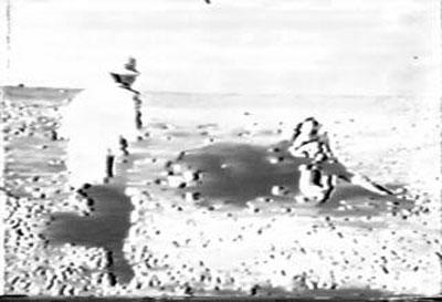 1954年押さえつけられた牛とカメラマン.jpg