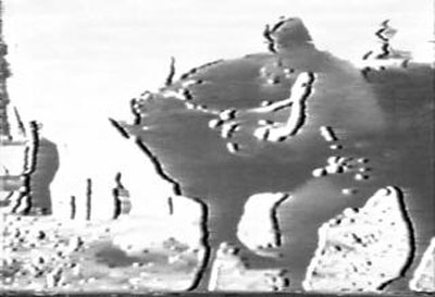 1954年角が折れた牛を止めようとする大山倍達.jpg