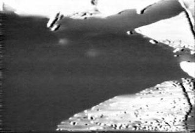 1954年牛の角を捻り取ろうとする大山倍達.jpg