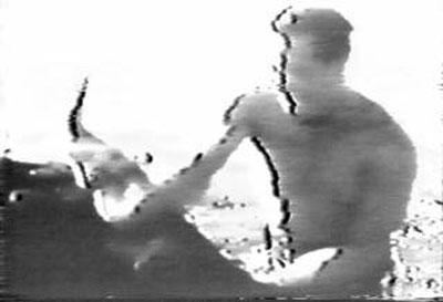 1954年大山倍達最後の手刀.jpg