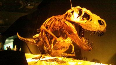 恐竜博.jpg