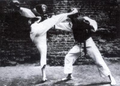 kyokushinkaikarate12.jpg