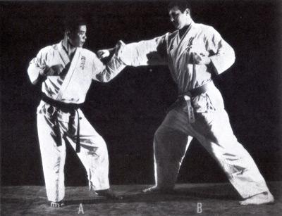 kyokushinkaikarate10.jpg