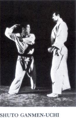 kyokushinkaikarate8.jpg