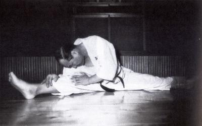 kyokushinkaikarate7.jpg