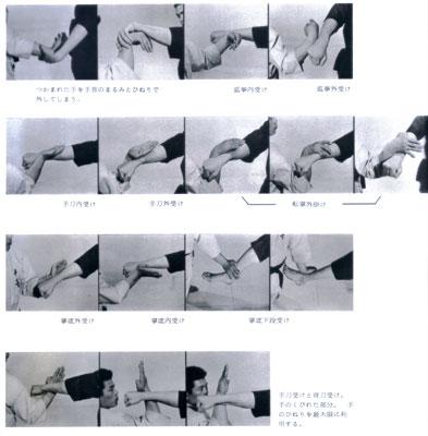 秘伝極真空手5.jpg
