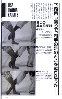ザ・カラテ11.jpg