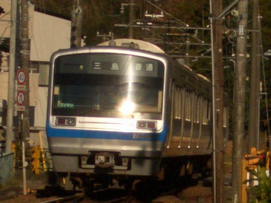 CIMG3788.JPG
