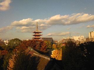 淺草公会堂から見える浅草寺