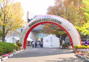 第26回国民文化祭・京都2011「大正琴の祭典」1