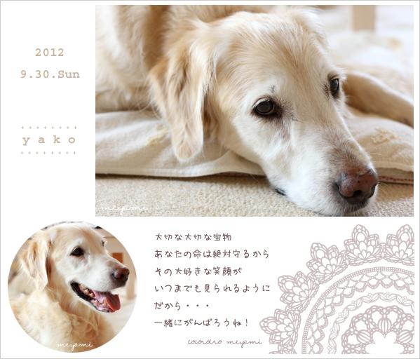 20120930yako