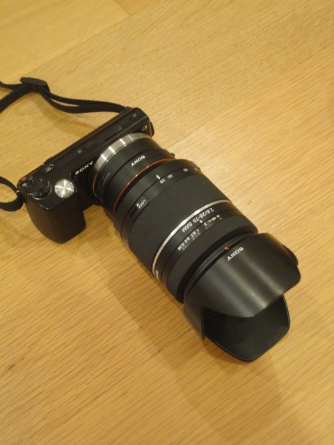 DSC00754.jpg