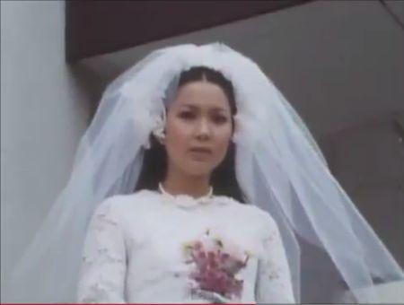 秘密戦隊ゴレンジャー 第57話