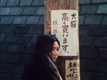 仮面ライダー 第10話