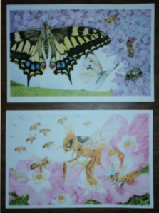 熊田千佳慕の絵のポストカード