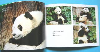 『ニーハオ!ふたごのパンダ』 中国語版