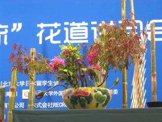 北京大学中日文化祭�