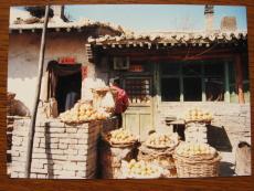 �1987短期留学