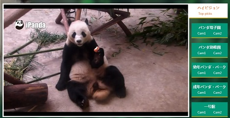 「パンダの24時間生放送」